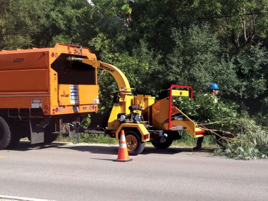Commercial Tree Services-Riverview FL Tree Trimming and Stump Grinding Services-We Offer Tree Trimming Services, Tree Removal, Tree Pruning, Tree Cutting, Residential and Commercial Tree Trimming Services, Storm Damage, Emergency Tree Removal, Land Clearing, Tree Companies, Tree Care Service, Stump Grinding, and we're the Best Tree Trimming Company Near You Guaranteed!